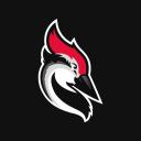 Woodpecker Email Marketing