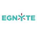 Egnyte Icon