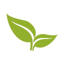 Broadleaf Commerce Icon