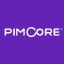 Pimcore DXP Icon